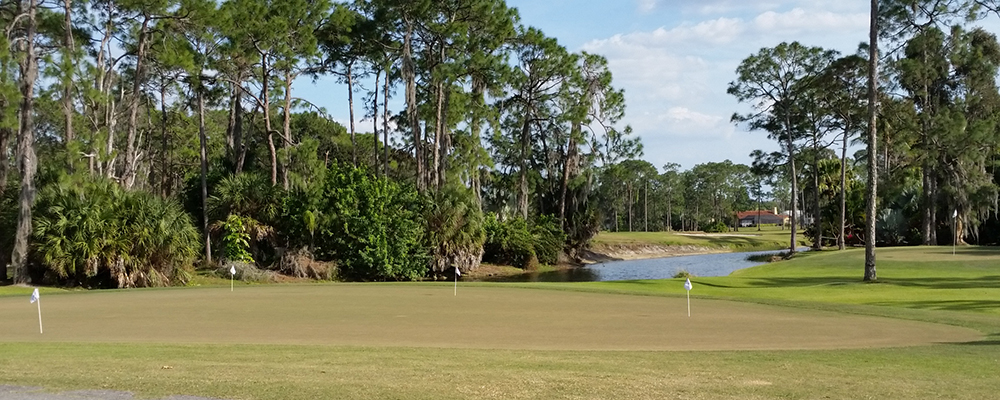golfing Fort Myers real estate Cape Coral golf